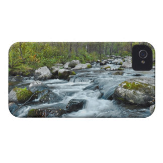 Relaxing Forest River iPhone 4 Case-Mate Case