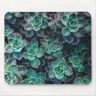 Relaxing Green Blue Succulent Cactus Plants Mouse Pad