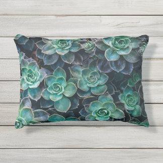 Relaxing Green Blue Succulent Cactus Plants Outdoor Pillow