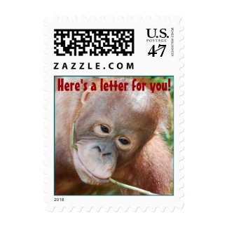 Relaxing in Rainforest Letter Writing Postage
