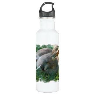 Relaxing Kangaroo 24oz Water Bottle