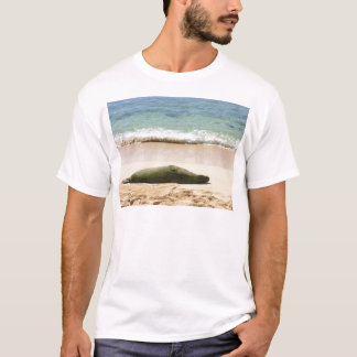 Relaxing Monk Seal T-Shirt