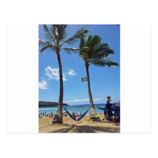 Relaxing on a Hawaii Beach Postcard