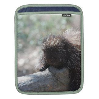 Relaxing Porcupine iPad Sleeve