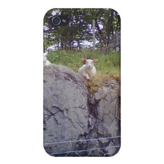 Relaxing Sheep iPhone 4 Case