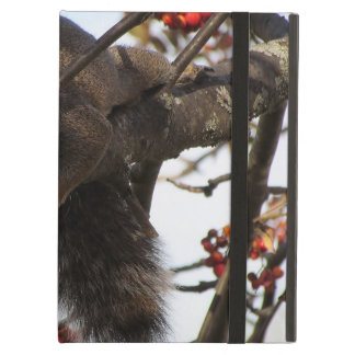 Relaxing squirrel case for iPad air