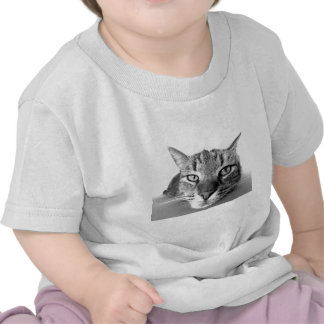 Relaxt horneas gato gato laid - Cat resting - Camiseta