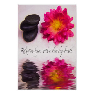 Relaxtion Begins Zen Stones And Dahlia Poster