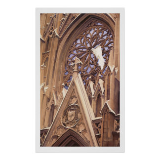 """Release"" Dove at Church Artwork Poster"