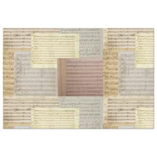 Relevo del manuscrito de la música de Mozart Papel De Seda Extragrande