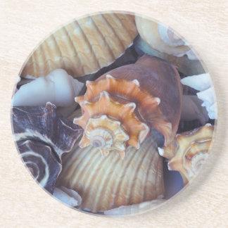 Relevo elegante del Seashell de los compañeros Posavasos Cerveza
