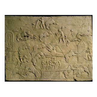 Relief depicting circus games postcard