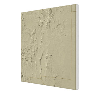 Relief Map of New Mexico Canvas Print