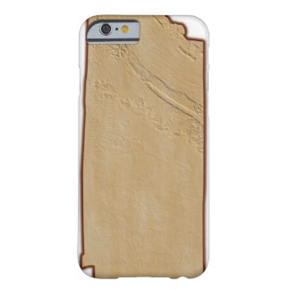 Relief Map of Tennessee Barely There iPhone 6 Case