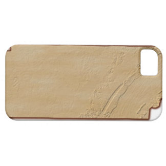 Relief Map of Tennessee iPhone 5 Covers