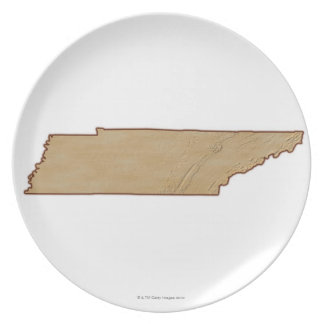 Relief Map of Tennessee Plates