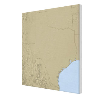 Relief Map of Texas 2 Canvas Print