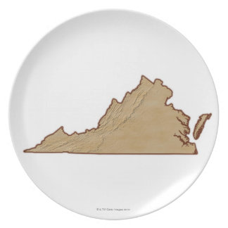 Relief Map of Virginia Plate