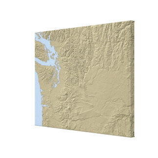 Relief Map of Washington Canvas Print