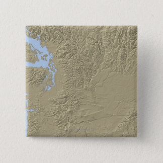 Relief Map of Washington Pinback Button