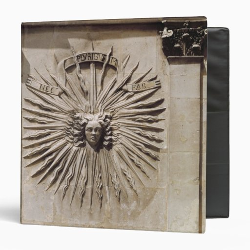 Relief of the sun from the facade vinyl binder