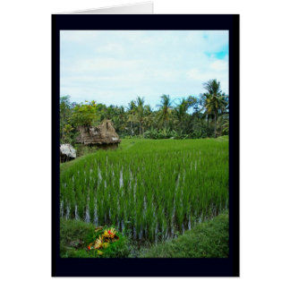 Religious Offering, Ubud Bali Card