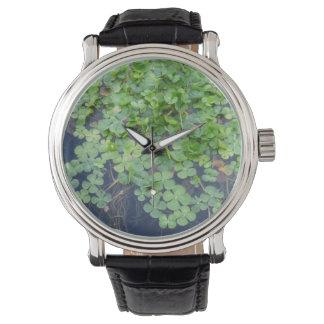 Reloj afortunado del trébol de cuatro hojas