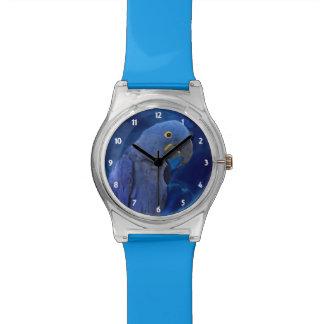 Reloj azul del Macaw May28th del jacinto