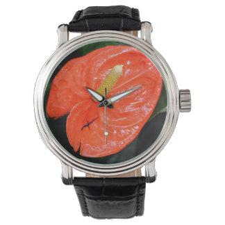 Reloj chino abigarrado de la linterna