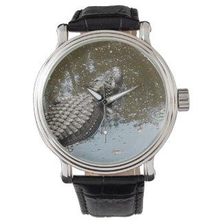 Reloj con las ilustraciones del cocodrilo