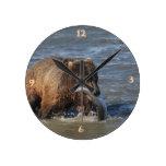 Reloj conseguido del oso de Alaska Brown de los pe