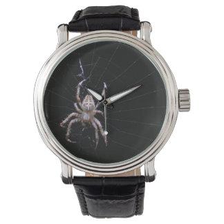 Reloj cruzado del ~ de la araña