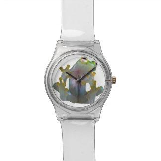 Reloj de cristal de la rana