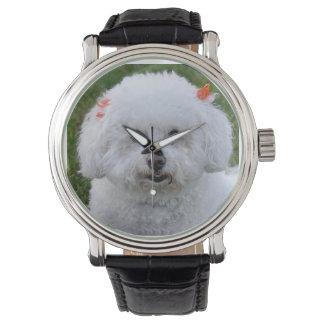 Reloj de cuero negro de Bichon Frise