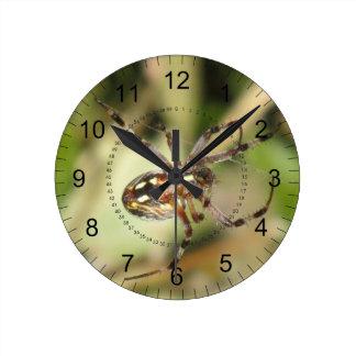 Reloj de la araña