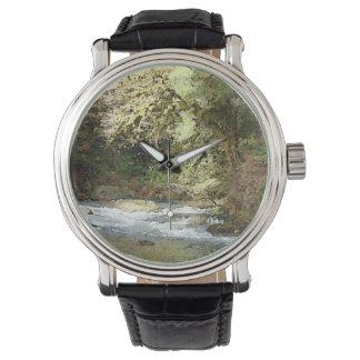 Reloj de la belleza de Oregon