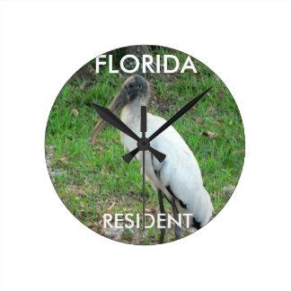 Reloj de la fauna de la Florida