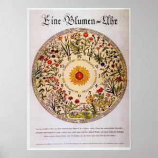 Reloj   de la flor de Blumenuhr Póster