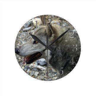 Reloj de la foto del Fauna-Partidario del estudio