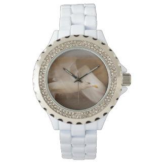 Reloj de la gaviota