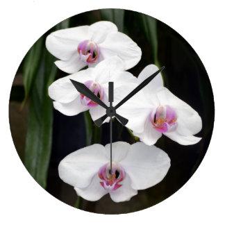 Reloj de la orquídea