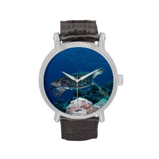 Reloj de la tortuga de mar