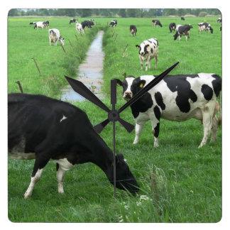 Reloj de la vaca