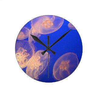Reloj de las medusas que brilla intensamente