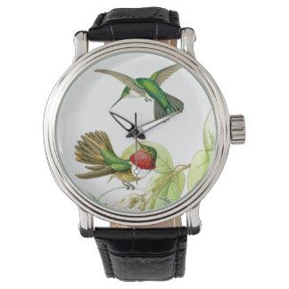 Reloj de los colibríes