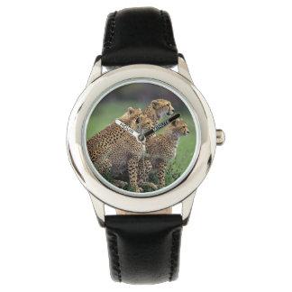 Reloj de los niños/guepardo clásicos de la fauna