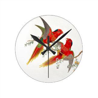 Reloj de los pájaros de Goulds Lorikeet