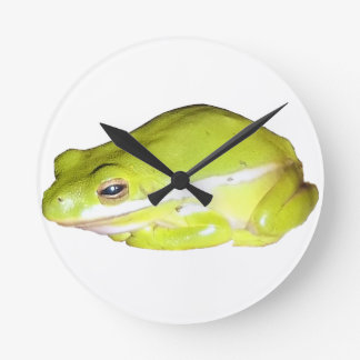 Reloj de pared americano de la rana arbórea