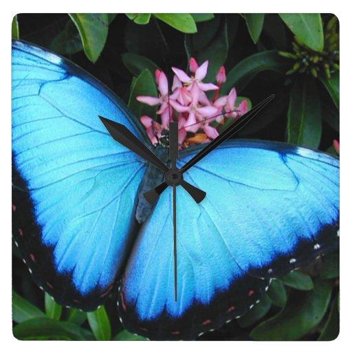 Reloj de pared azul de la mariposa de Morpho