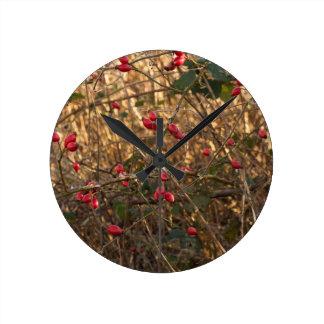 Reloj de pared de la cadera color de rosa